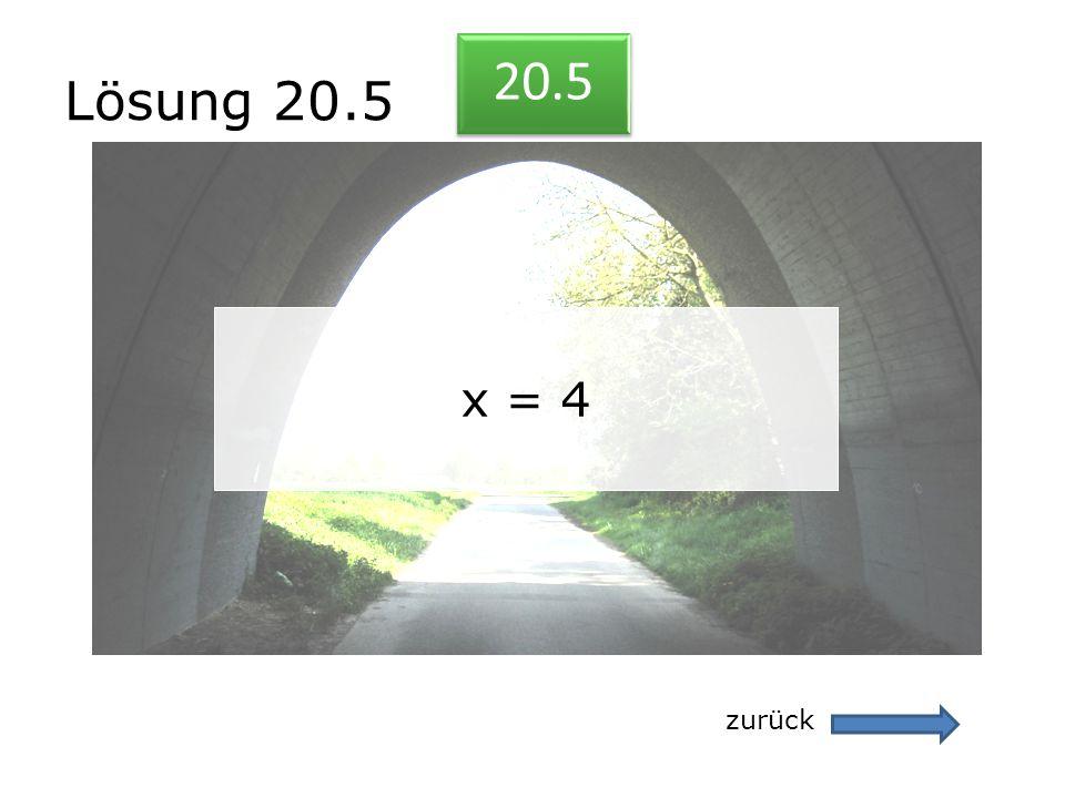 Lösung 20.5 zurück 20.5 x = 4