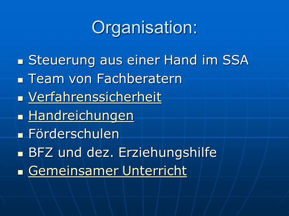 Organisation: Steuerung aus einer Hand im SSA Steuerung aus einer Hand im SSA Team von Fachberatern Team von Fachberatern Verfahrenssicherheit Verfahr