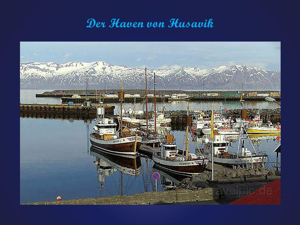 Der Haven von Husavik