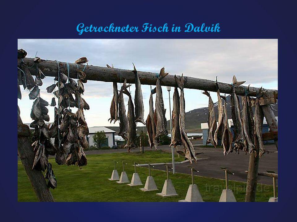 Fischhallen von Höfn