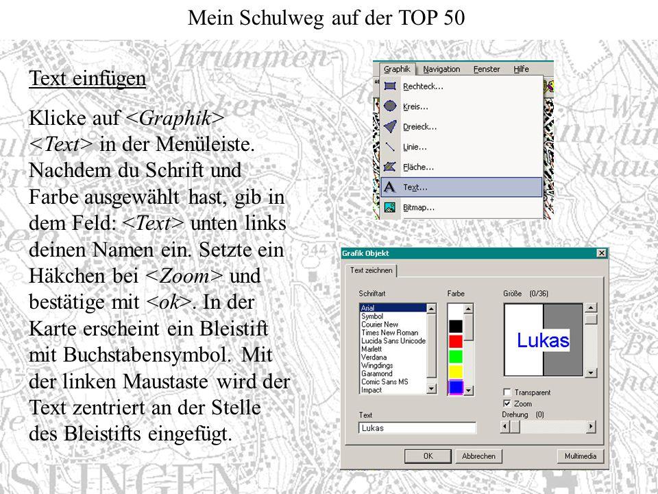 Mein Schulweg auf der TOP 50 Text einfügen Klicke auf in der Menüleiste. Nachdem du Schrift und Farbe ausgewählt hast, gib in dem Feld: unten links de