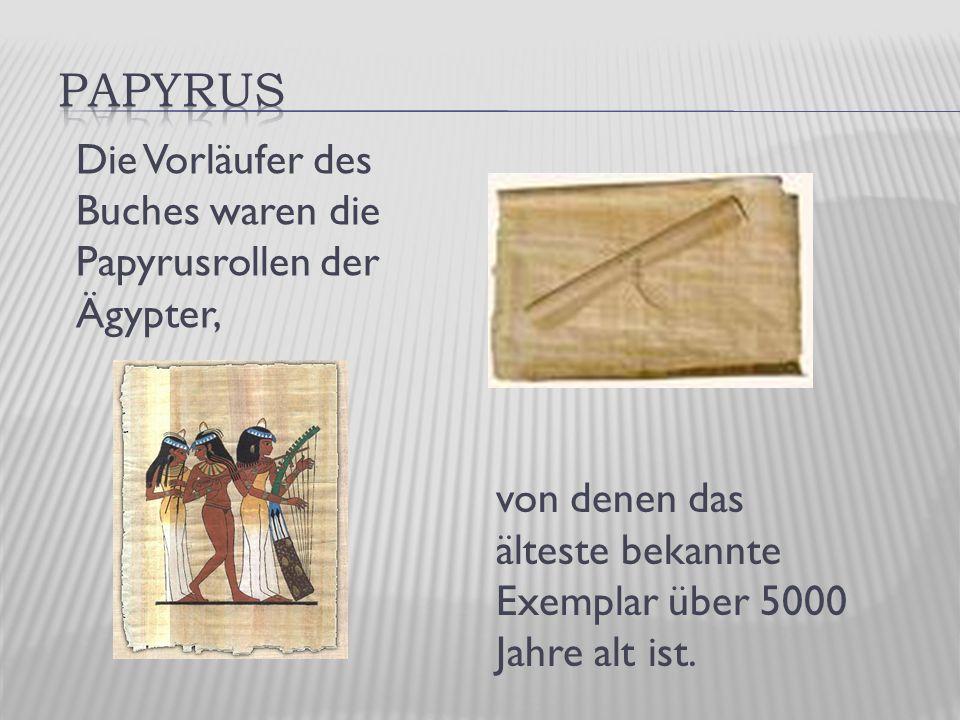 von denen das älteste bekannte Exemplar über 5000 Jahre alt ist.