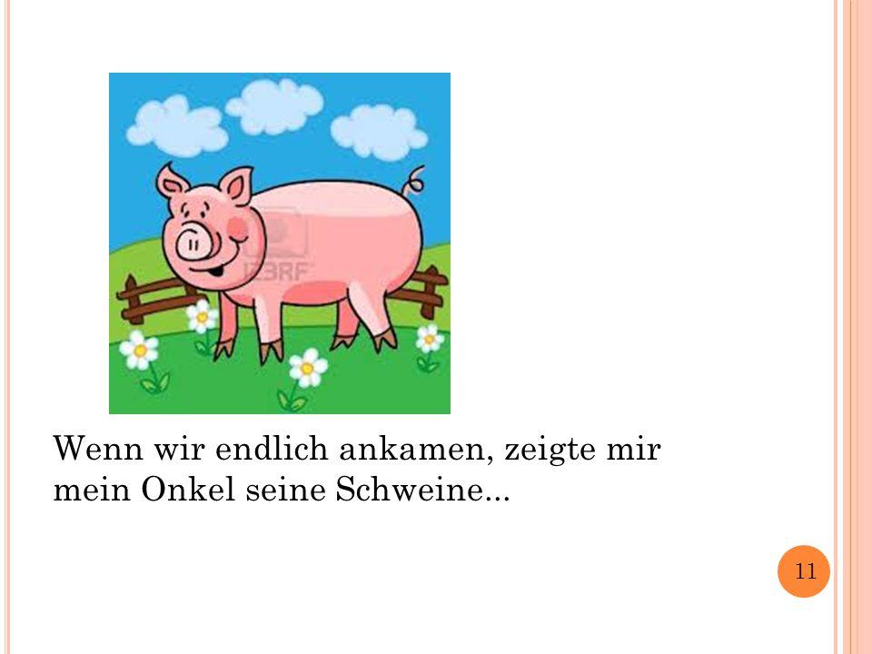 Wenn wir endlich ankamen, zeigte mir mein Onkel seine Schweine... 11