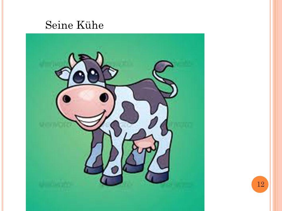 Seine Kühe 12