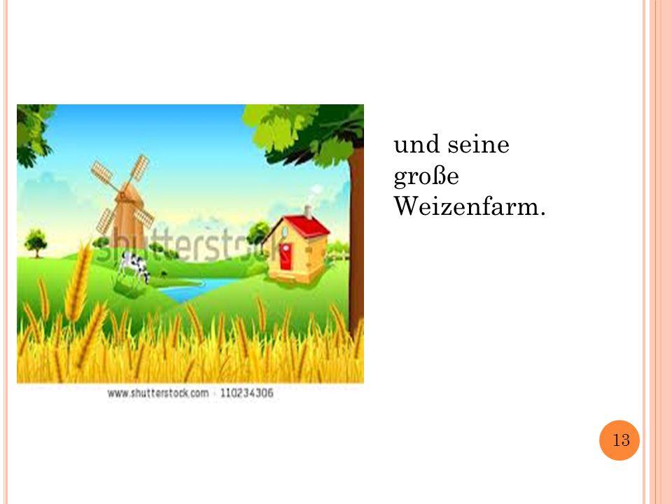 und seine große Weizenfarm. 13