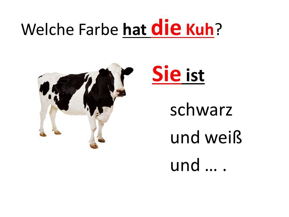 Welche Farbe hat die Kuh? Sie ist schwarz und weiß und ….
