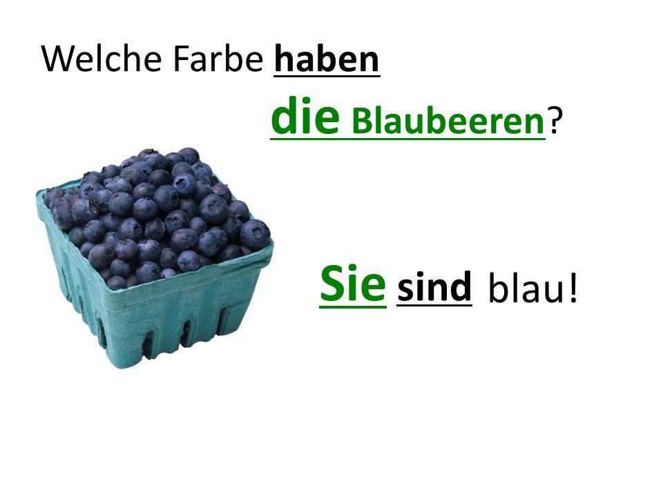 Welche Farbe haben die Blaubeeren? Sie sind blau!