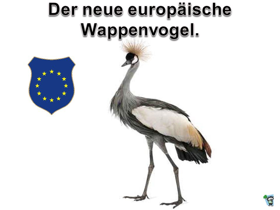 Liebes Europa, was soll aus Dir mal werden