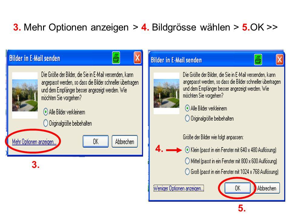 3. Mehr Optionen anzeigen > 4. Bildgrösse wählen > 5.OK >> 3. 4. 5.