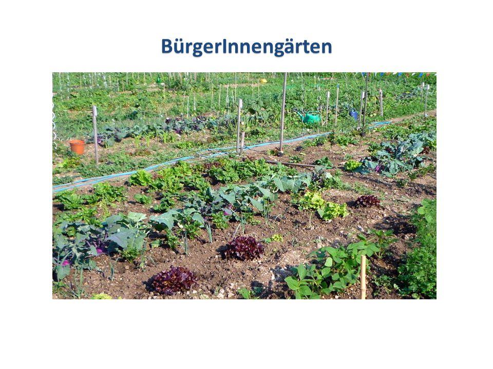 SonstigeInformationen Sonstige Informationen Mit Beginn der Gartensaison Anfang Mai werden die einzelnen Flächen den MieterInnen vor Ort zugewiesen.