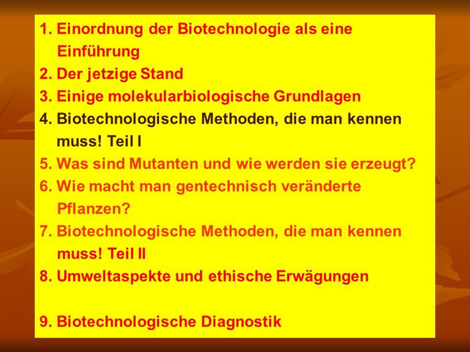 Vorläufiges Programm, interaktiv 1. Einordnung der Biotechnologie als eine Einführung 2.