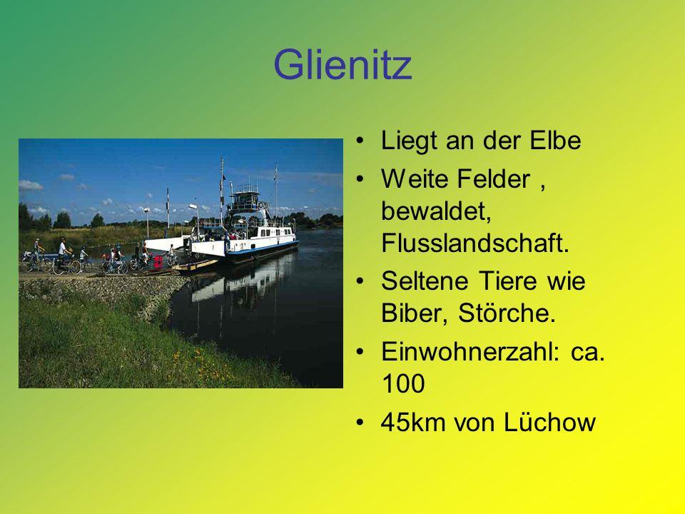 Glienitz Liegt an der Elbe Weite Felder, bewaldet, Flusslandschaft. Seltene Tiere wie Biber, Störche. Einwohnerzahl: ca. 100 45km von Lüchow