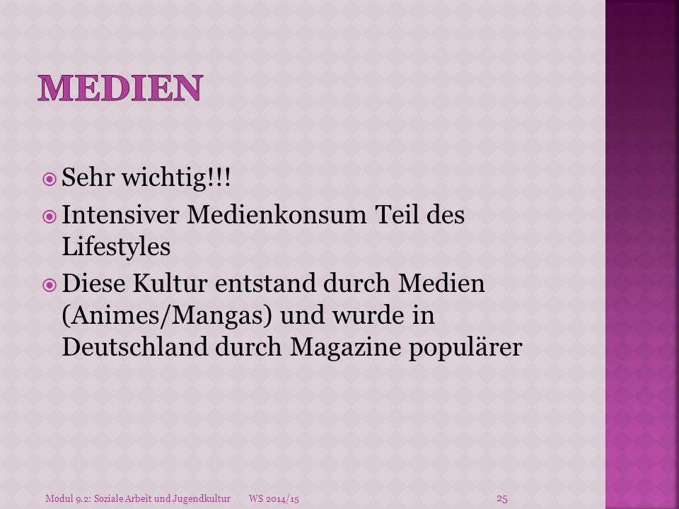  Sehr wichtig!!!  Intensiver Medienkonsum Teil des Lifestyles  Diese Kultur entstand durch Medien (Animes/Mangas) und wurde in Deutschland durch Ma