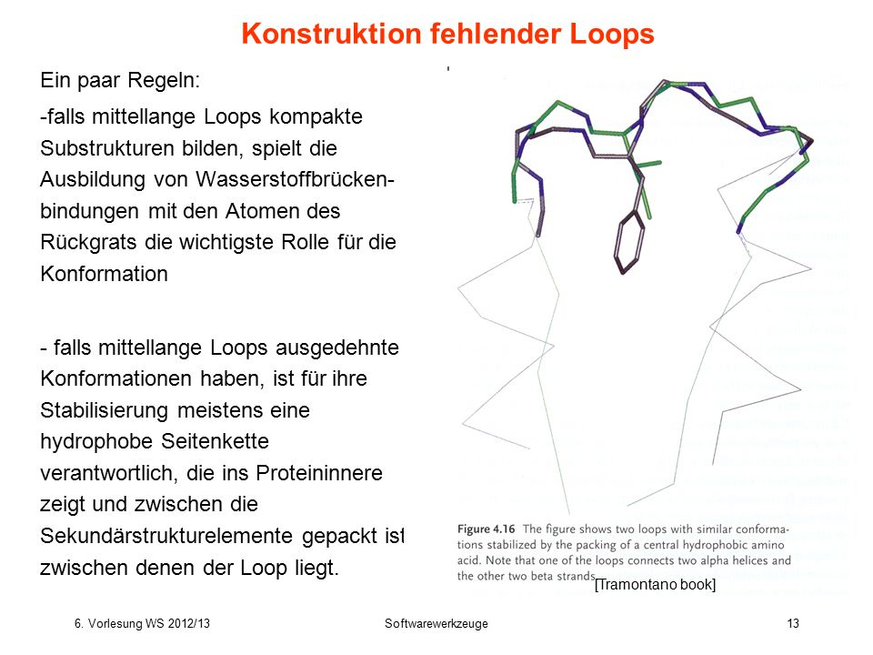 6. Vorlesung WS 2012/13Softwarewerkzeuge13 Ein paar Regeln: -falls mittellange Loops kompakte Substrukturen bilden, spielt die Ausbildung von Wasserst