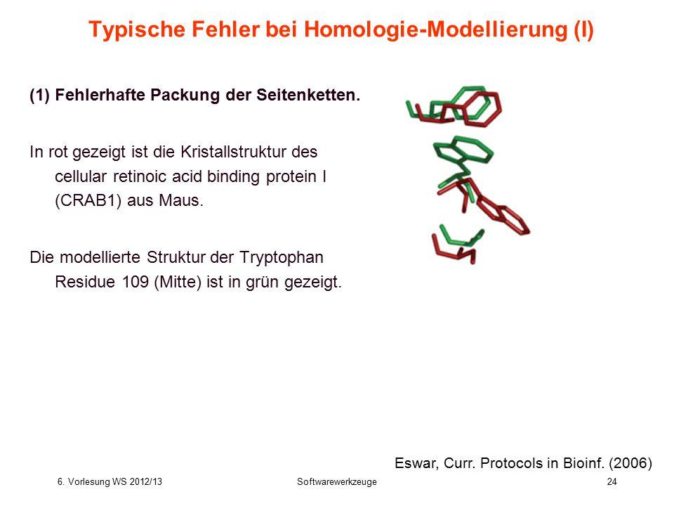 6. Vorlesung WS 2012/13Softwarewerkzeuge24 Typische Fehler bei Homologie-Modellierung (I) (1)Fehlerhafte Packung der Seitenketten. In rot gezeigt ist