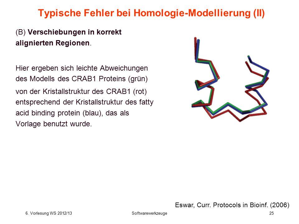 6. Vorlesung WS 2012/13Softwarewerkzeuge25 Typische Fehler bei Homologie-Modellierung (II) (B) Verschiebungen in korrekt alignierten Regionen. Hier er