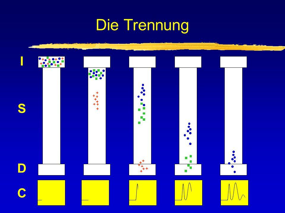 Das Chromatogramm Programmstart Basislinie Detektor- Signal Lösungsmittel-Peak Zeit
