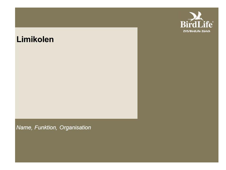 Limikolen Name, Funktion, Organisation