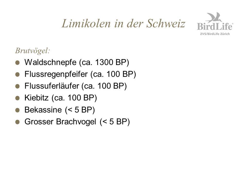 Limikolen in der Schweiz Brutvögel: Waldschnepfe (ca. 1300 BP) Flussregenpfeifer (ca. 100 BP) Flussuferläufer (ca. 100 BP) Kiebitz (ca. 100 BP) Bekass