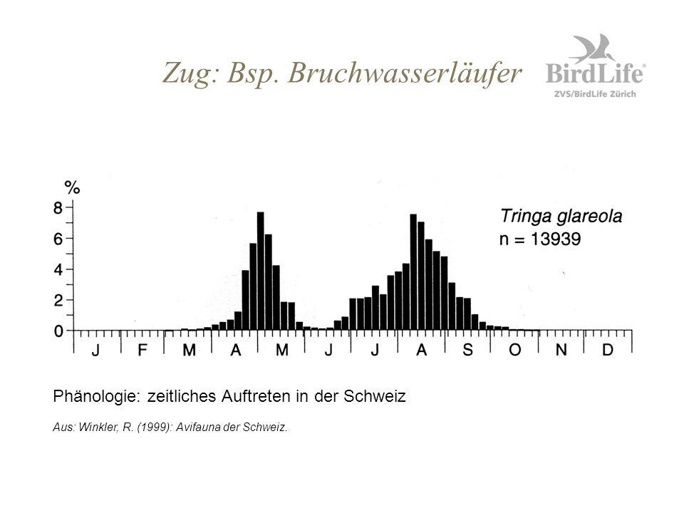 Zug: Bsp. Bruchwasserläufer Phänologie: zeitliches Auftreten in der Schweiz Aus: Winkler, R. (1999): Avifauna der Schweiz.