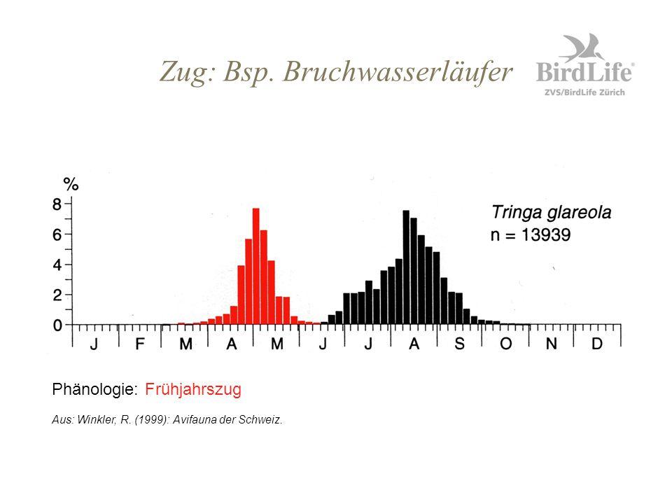 Zug: Bsp. Bruchwasserläufer Phänologie: Frühjahrszug Aus: Winkler, R. (1999): Avifauna der Schweiz.