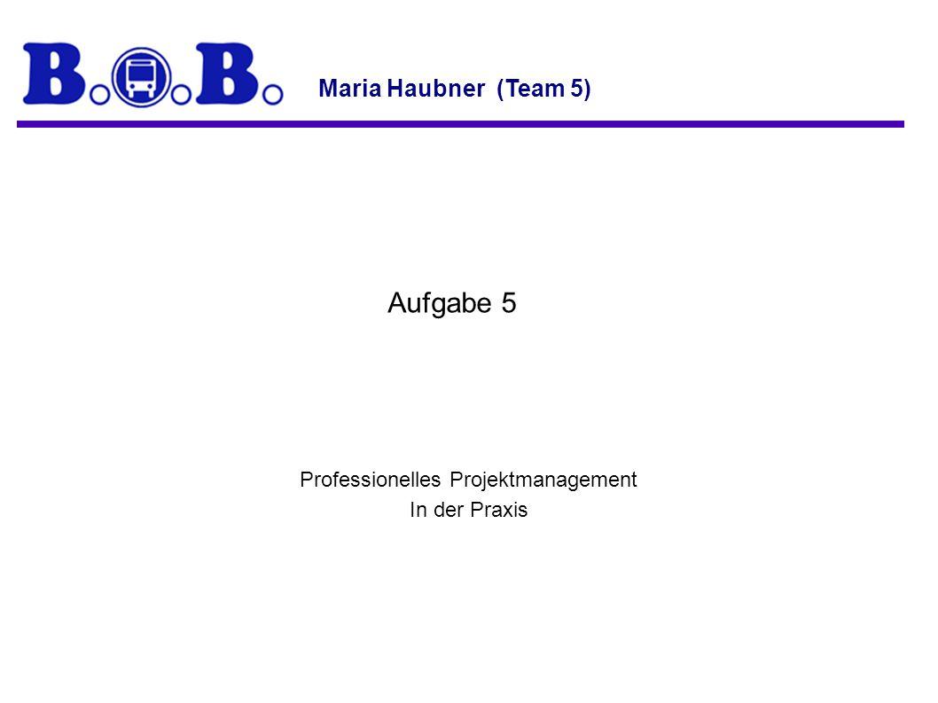 Professionelles Projektmanagement In der Praxis Aufgabe 5 Maria Haubner (Team 5)
