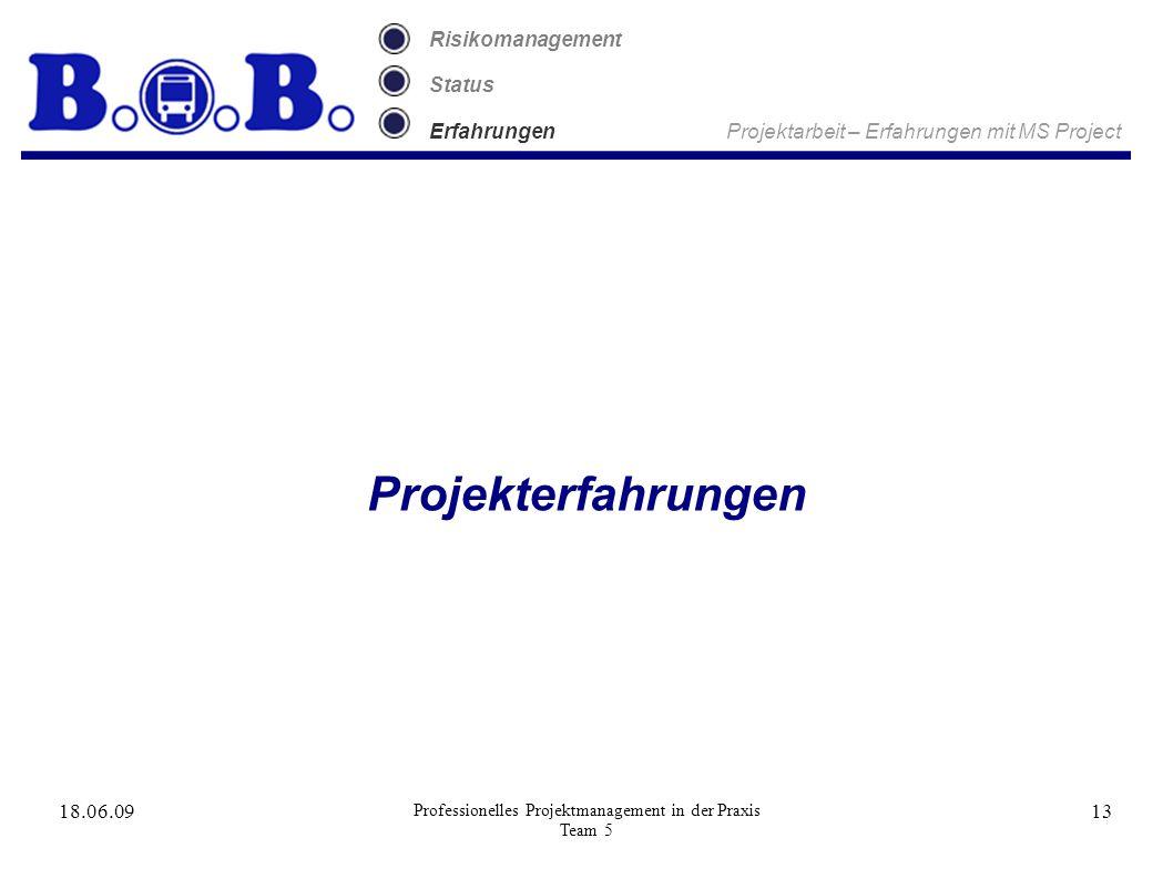 18.06.09 Professionelles Projektmanagement in der Praxis Team 5 13 Risikomanagement Status Erfahrungen Projektarbeit – Erfahrungen mit MS Project Projekterfahrungen