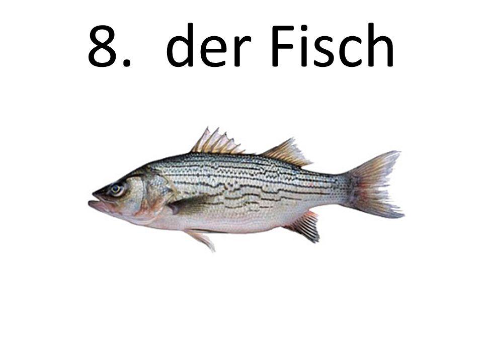 8. der Fisch