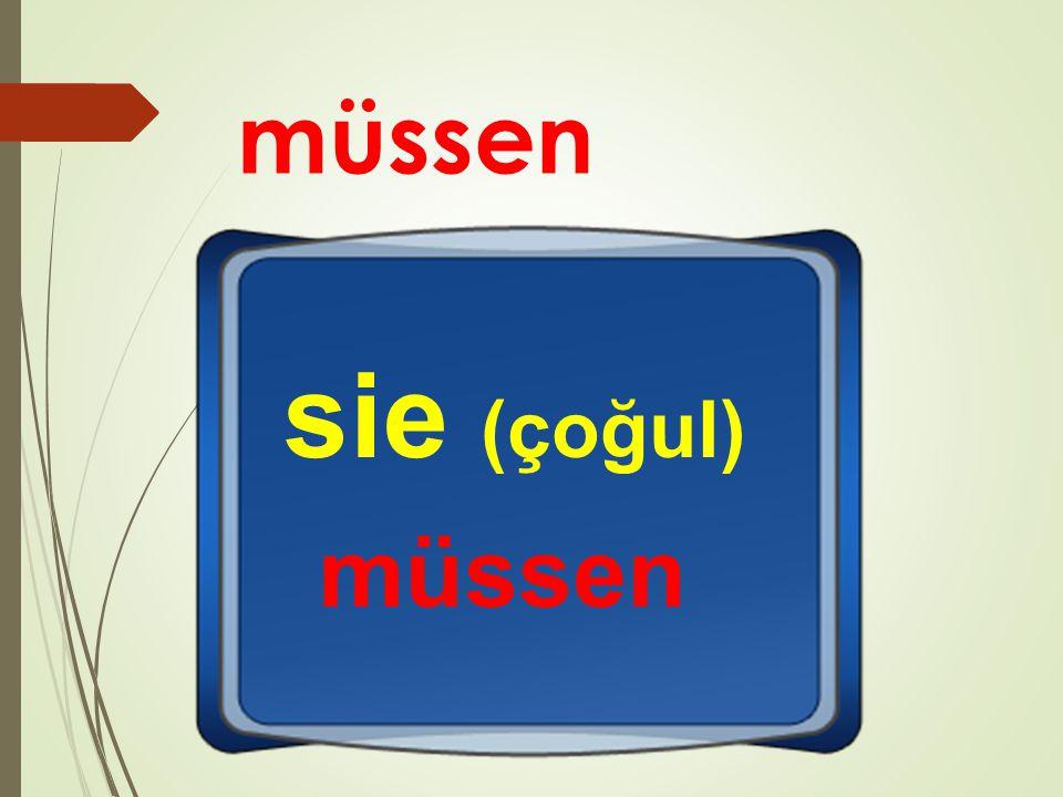müssen sie (çoğul) müssen