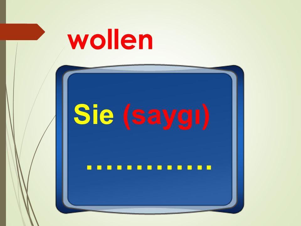 wollen Sie (saygı) ………….
