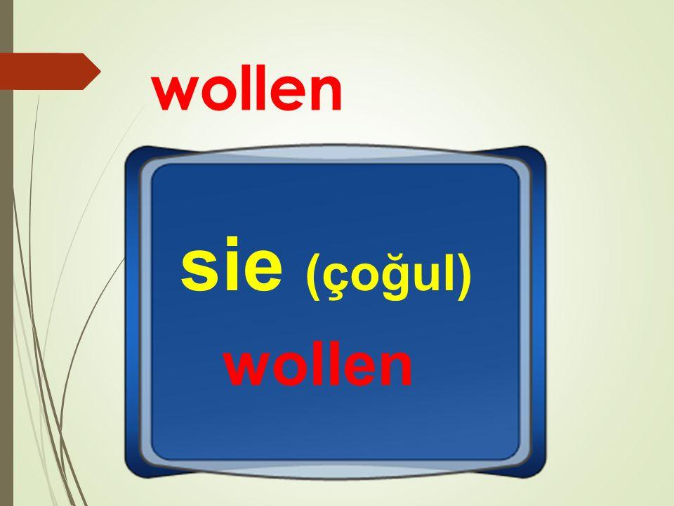 wollen sie (çoğul) wollen