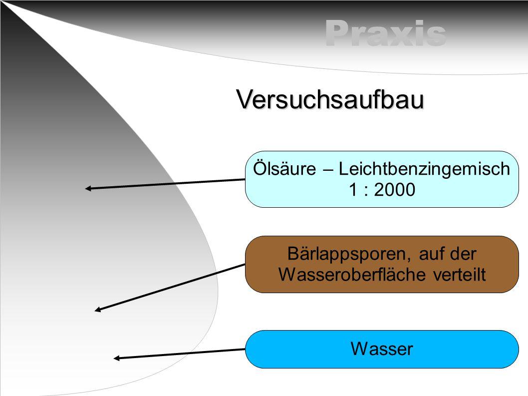 PraxisVersuchsaufbau Ölsäure – Leichtbenzingemisch 1 : 2000 Bärlappsporen, auf der Wasseroberfläche verteilt Wasser