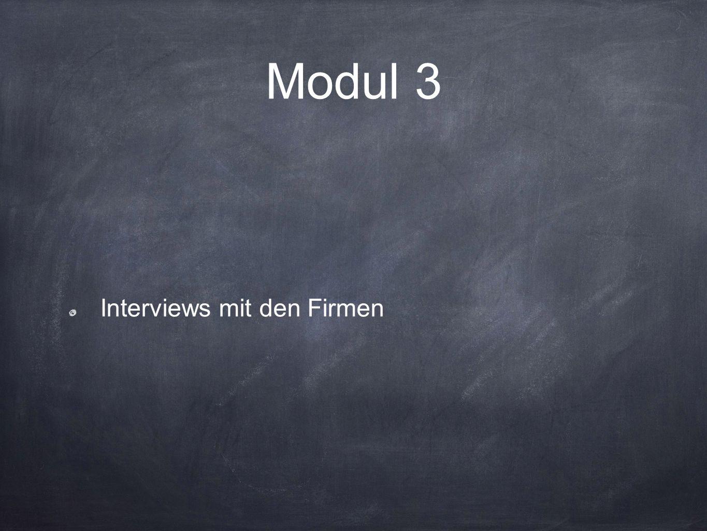 Modul 3 Interviews mit den Firmen