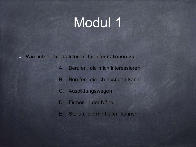 Modul 1 Wie nutze ich das Internet für Informationen zu: A.Berufen, die mich interessieren B.Berufen, die ich ausüben kann C.Ausbildungswegen D.Firmen in der Nähe E.Stellen, die mir helfen können