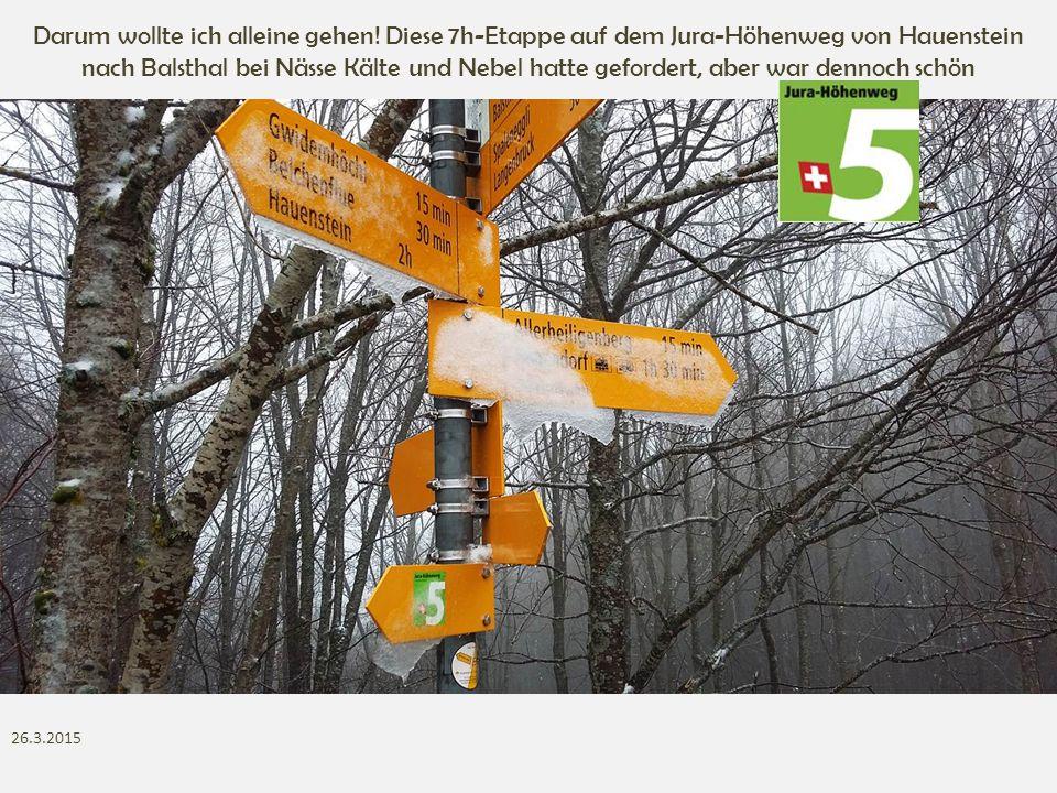 Darum wollte ich alleine gehen! Diese 7h-Etappe auf dem Jura-Höhenweg von Hauenstein nach Balsthal bei Nässe Kälte und Nebel hatte gefordert, aber war