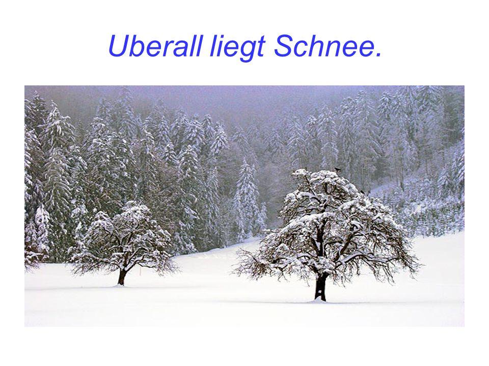 Uberall liegt Schnee.