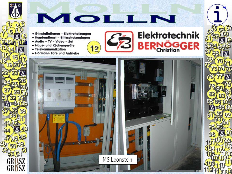 Gemeinde/ Ausstellung/ Molln/                         