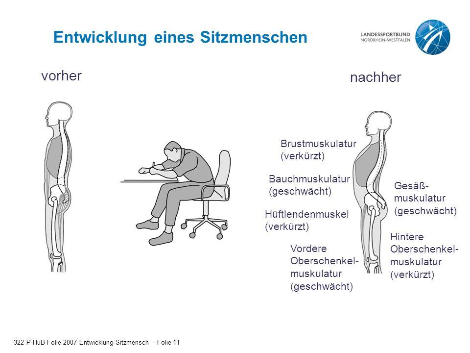 Entwicklung eines Sitzmenschen 322 P-HuB Folie 2007 Entwicklung Sitzmensch - Folie 11 vorher nachher Brustmuskulatur (verkürzt) Bauchmuskulatur (gesch