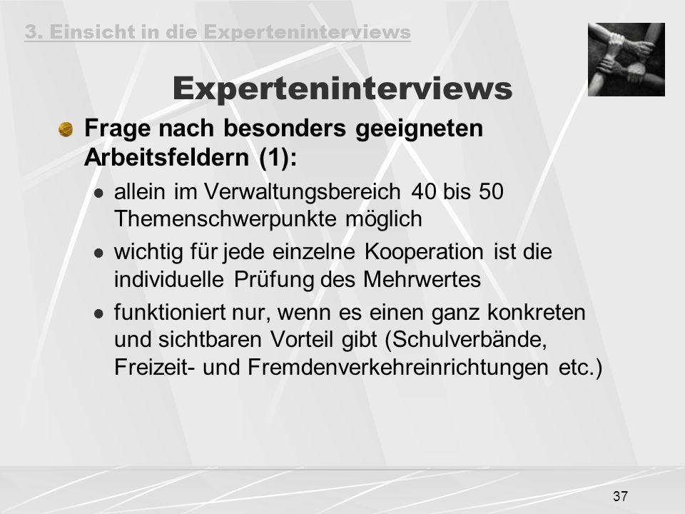 37 Experteninterviews Frage nach besonders geeigneten Arbeitsfeldern (1): allein im Verwaltungsbereich 40 bis 50 Themenschwerpunkte möglich wichtig fü