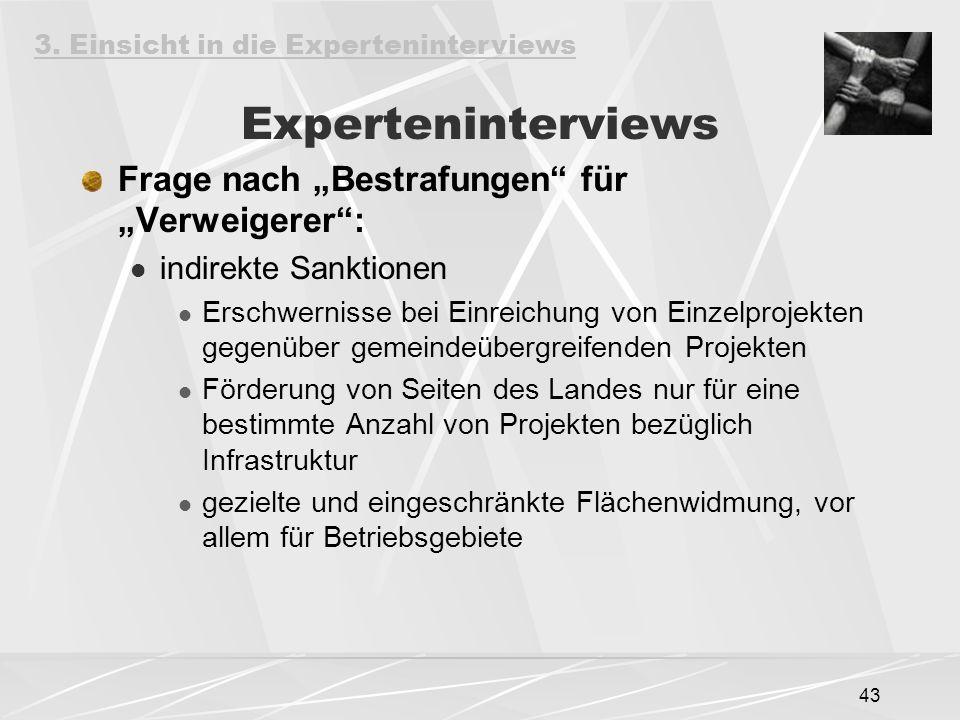 """43 Experteninterviews Frage nach """"Bestrafungen"""" für """"Verweigerer"""": indirekte Sanktionen Erschwernisse bei Einreichung von Einzelprojekten gegenüber ge"""