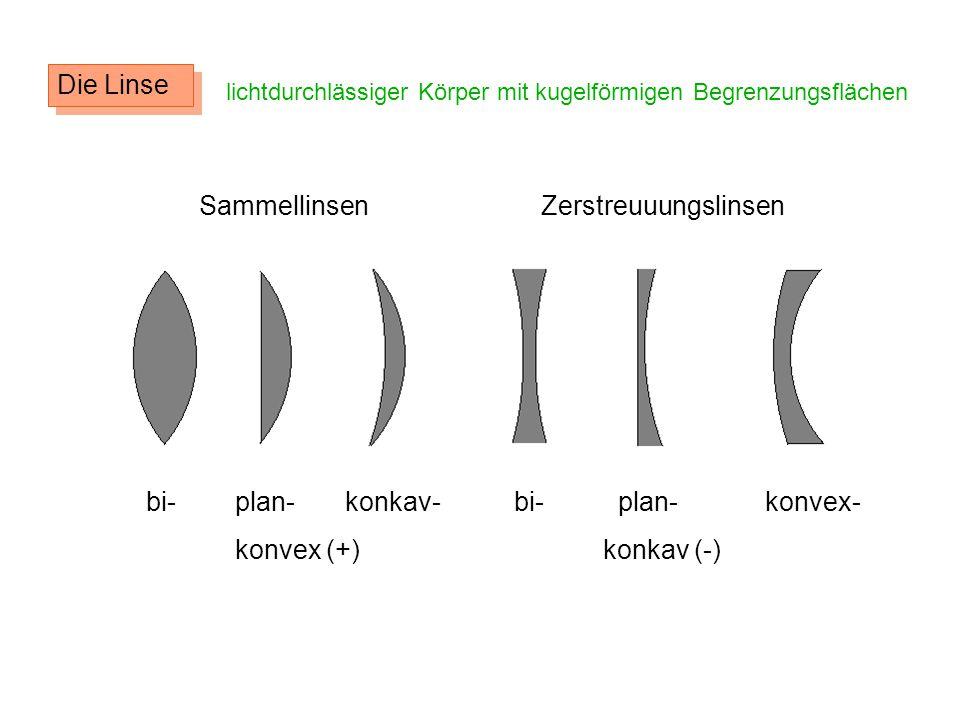 Die Linse lichtdurchlässiger Körper mit kugelförmigen Begrenzungsflächen Sammellinsen Zerstreuuungslinsen bi- plan- konkav- konvex (+) bi- plan- konve