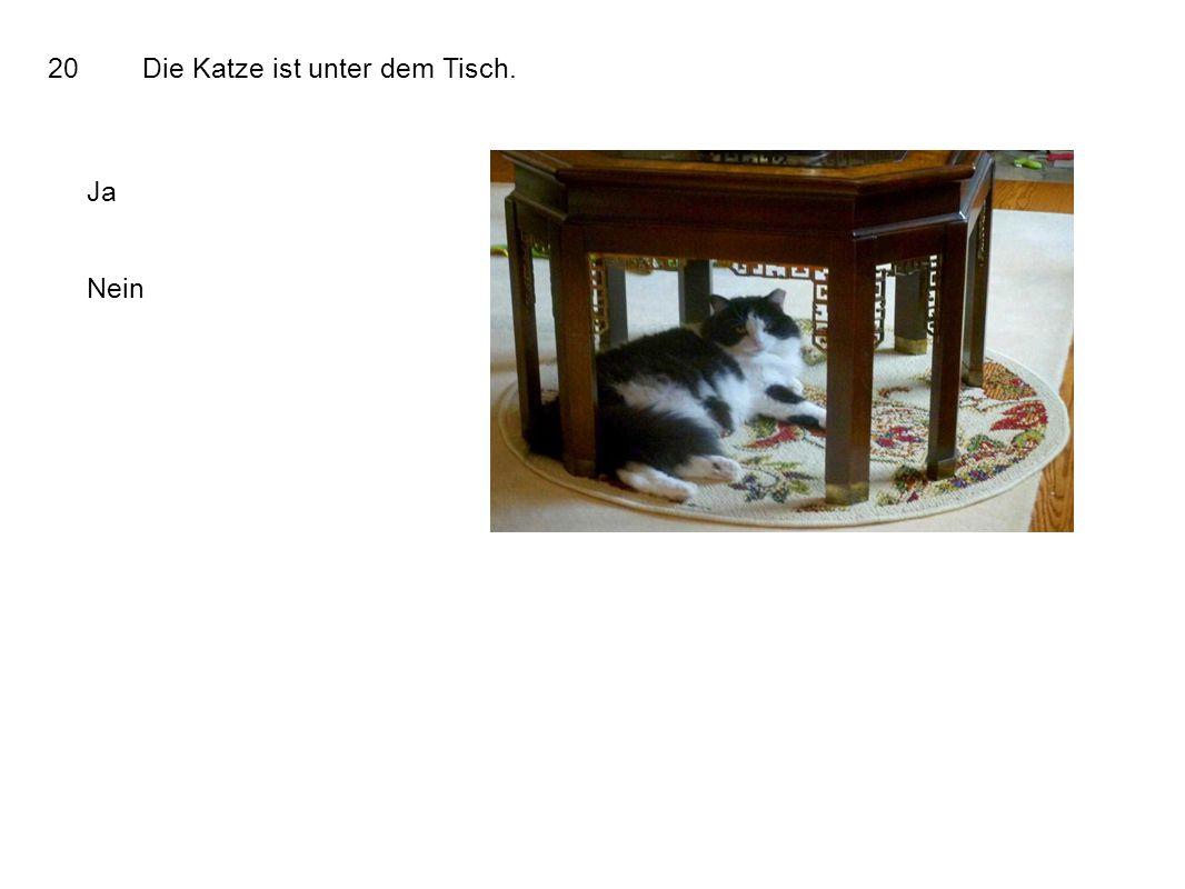 20Die Katze ist unter dem Tisch. Ja Nein