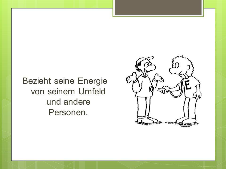 E - Typ Bezieht seine Energie von seinem Umfeld und andere Personen.