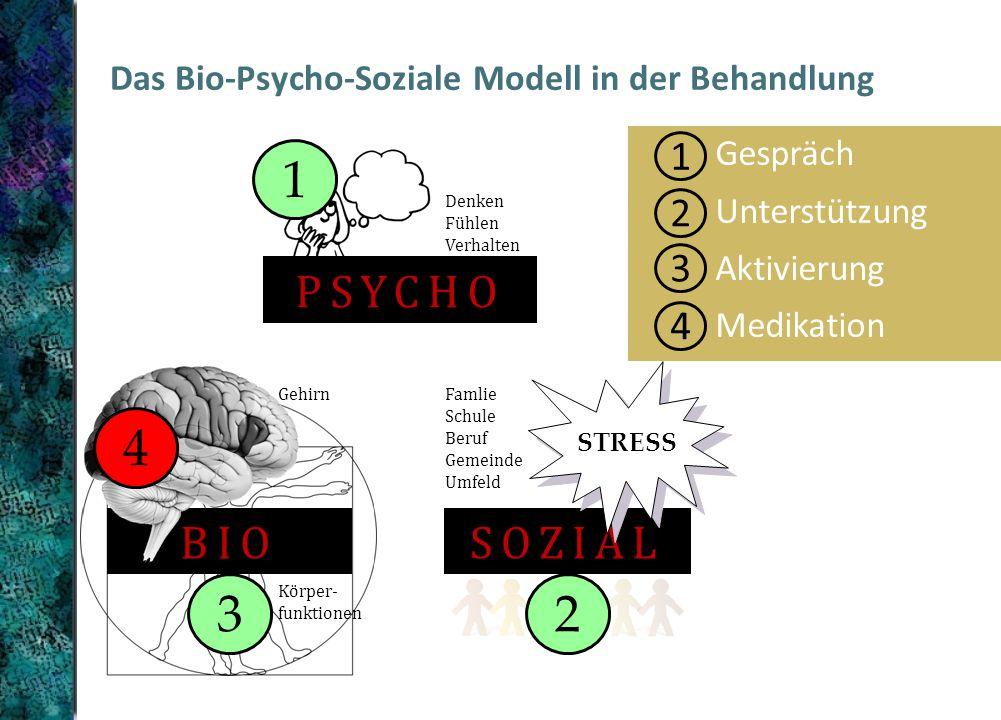 1 2 3 4 Gespräch Unterstützung Aktivierung Medikation Das Bio-Psycho-Soziale Modell in der Behandlung BIO Gehirn Körper- funktionen PSYCHO Denken Fühlen Verhalten SOZIAL STRESS Famlie Schule Beruf Gemeinde Umfeld 4 1 3 2