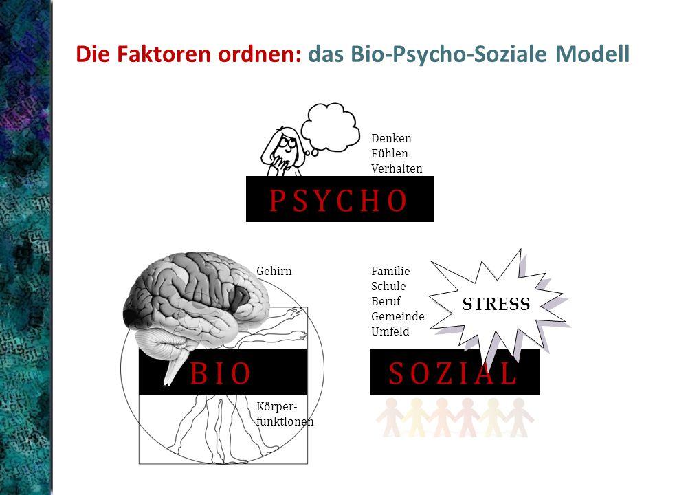 Die Faktoren ordnen: das Bio-Psycho-Soziale Modell BIO Gehirn Körper- funktionen PSYCHO Denken Fühlen Verhalten SOZIAL STRESS Familie Schule Beruf Gemeinde Umfeld