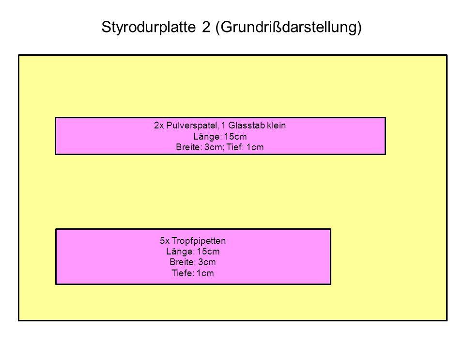 Styrodurplatte 2 (Grundrißdarstellung) 5x Tropfpipetten Länge: 15cm Breite: 3cm Tiefe: 1cm 2x Pulverspatel, 1 Glasstab klein Länge: 15cm Breite: 3cm;