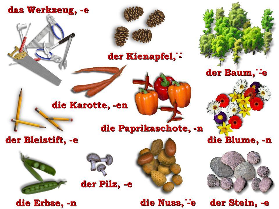 die Paprikaschote, -n der Bleistift, -e der Pilz, -e : der Kienapfel, - der Stein, -e der Baum, -e : das Werkzeug, -e die Nuss, -e : die Blume, -n die Erbse, -n die Karotte, -en