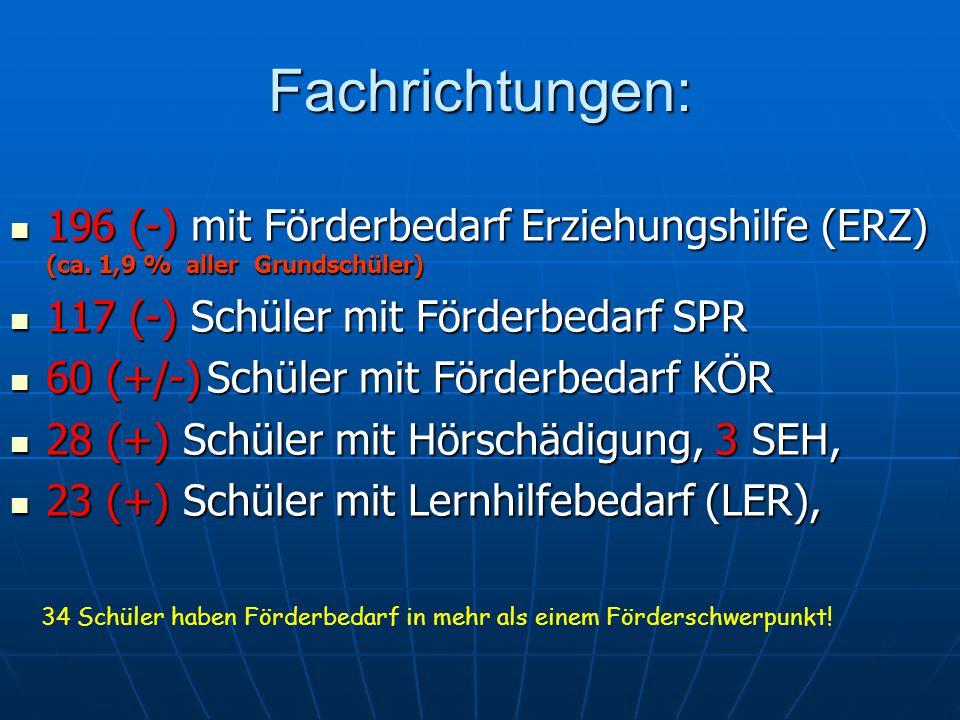 Fachrichtungen: 196 (-) mit Förderbedarf Erziehungshilfe (ERZ) (ca.