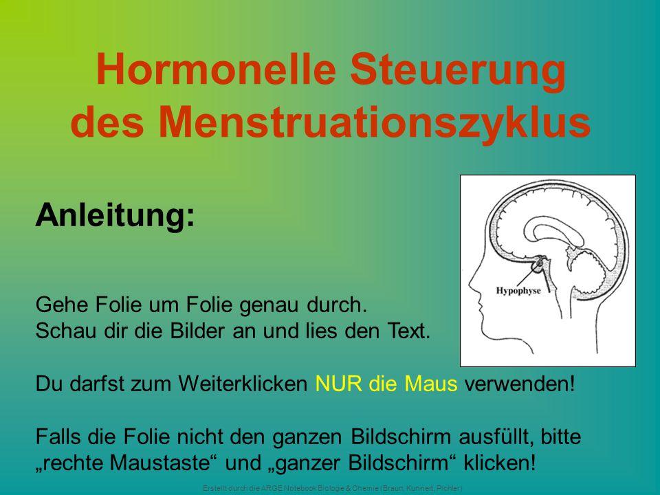 Erstellt durch die ARGE Notebook Biologie & Chemie (Braun, Kunnert, Pichler) Hormonelle Steuerung des Menstruationszyklus Anleitung: Gehe Folie um Fol
