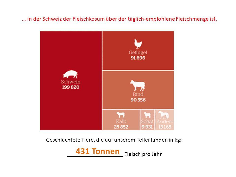 … in der Schweiz der Fleischkosum über der täglich-empfohlene Fleischmenge ist.